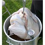 Turkey/Poultry